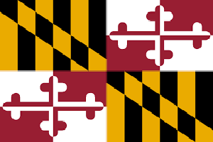 Maryland IT Support Services
