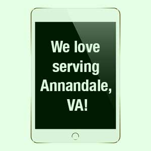Annandale IT Support Services